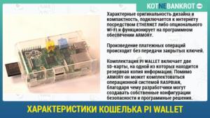 описание кошелька pi wallet