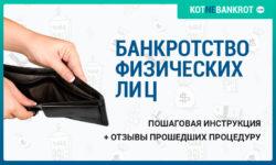 Банкротство физических лиц пошаговая инструкция