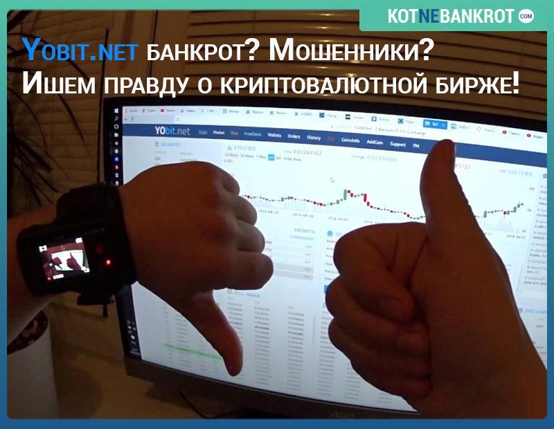yobit банкротство компании